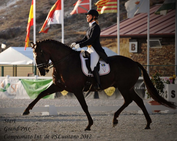 Debute for Viktoria and Start in Grand Prix! - Yeguada Vikinga PRE