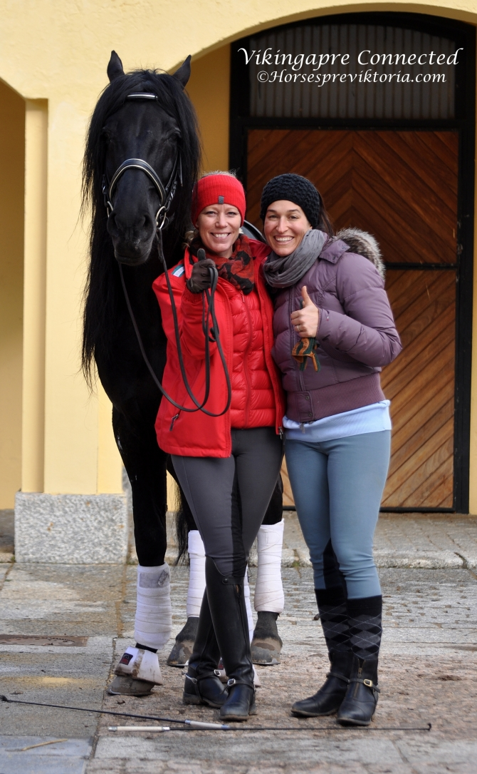 Testimonials and news from clients - Vikinga Sales & Breeding